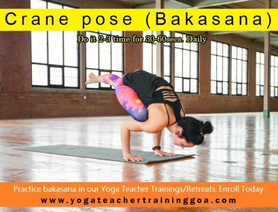 dive deeper into the practice of Ashtanga!! Join Yoga Retreat in Goa