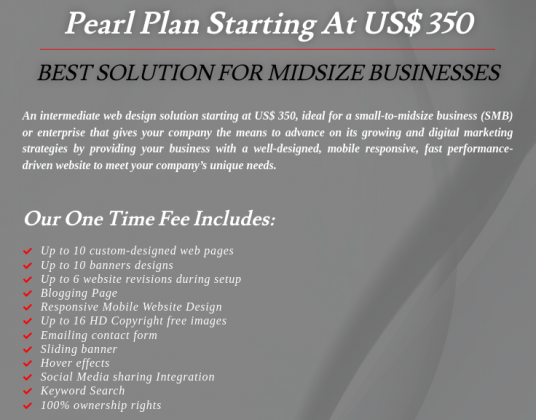 Professional Website Design for US$ 95 at BPM