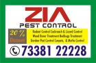 Pest Control Kacharkanahalli | 1536 | Office cum residence treatment