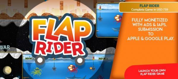 Launch your own Flap Rider game