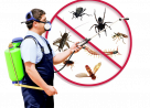 Pest control Hayes