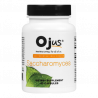 Saccharomyces Probiotic | Vitamin for Gut Health Support | 60 Capsules