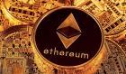 Bitcoin Wallet Live Customer Service