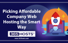 Picking Affordable Company Web Hosting the Smart Way