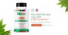 https://bestnutrichoice.com/natures-boost-cbd-gummies/